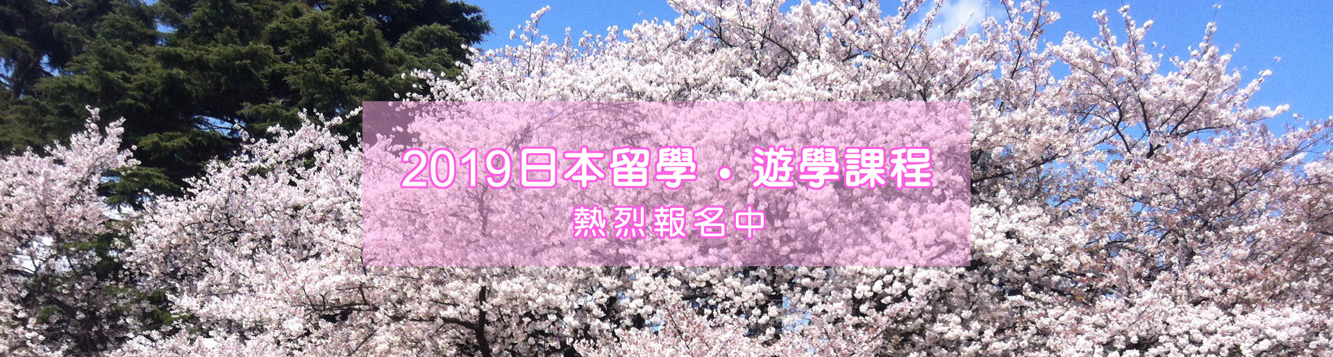 2019日本留學・遊學課程-熱烈報名中