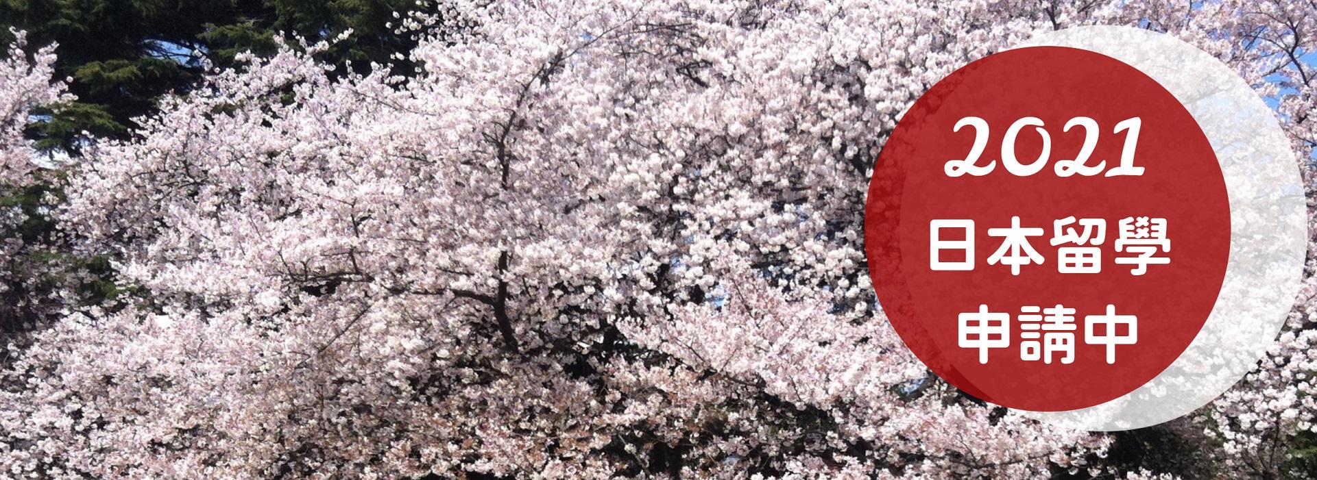 2021日本留學申請中深紅白